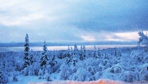 CheechakoArt_Prologue_Dec31_2012
