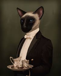 Cat butler