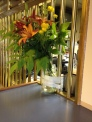 Flowers at pursar's window